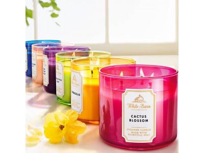 <Огляд кращих свічок від Bath And Body Works