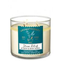 Свічка Aromatherapy Stress Relief Eucaliptus Tea від Bath And Body Works